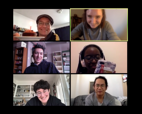 screencap of online meeting