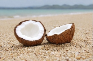 coconuts on a beach